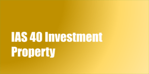 IAS 40 Investment Property | Examples | PDF